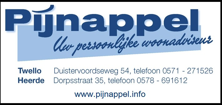 Logo in kleur Pijnappel.pdf
